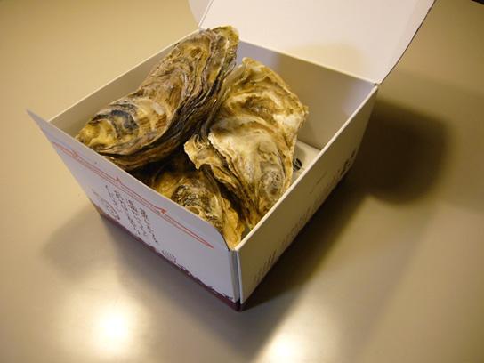 蒸しレンジャー(牡蠣)電子レンジ専用調理器